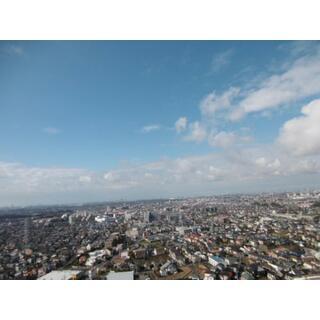 スカイプラザサウスタワー29階 専有面積218平米 29階 4LDK