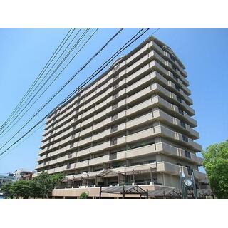 藤和舟入ハイタウン 11階 2LDK