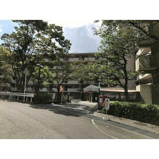 サンロイヤル池田バードヒルズ 2号棟 2階 3LDK