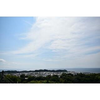 鎌倉山ハイツ 1階 1K