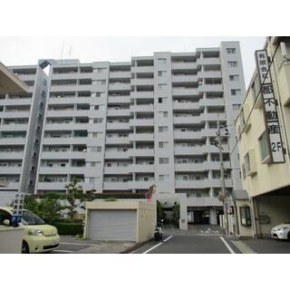 サーパス東古松 8階 3LDK