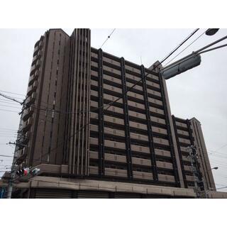 シティコーポ光が丘壱号館 10階 3LDK