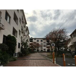 浜寺ガーデンハイム 3階 3SLDK