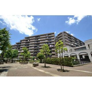 コスモふじみ野サウスフォーラム 7階 3SLDK