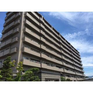 サーパス栗田 9階 4LDK