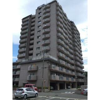 宝稲葉地ハイツ 11階 3SDK