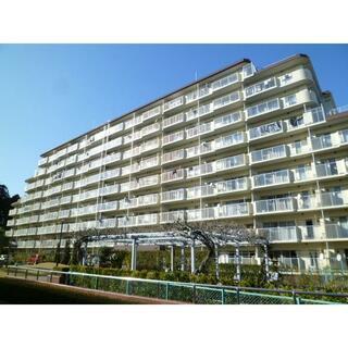 成田中央公園スカイハイツC棟 4階 3LDK