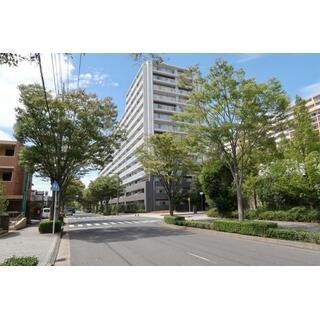 中古マンション 前面棟なし サングランデ公津の杜グレイス 7階 3LDK