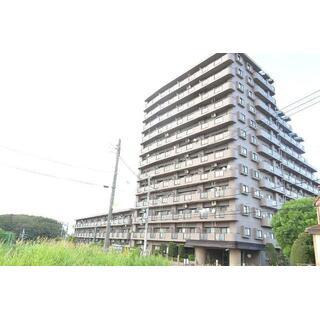 グリーンコーポ津田沼タウンヒルズ 5階 1SLDK