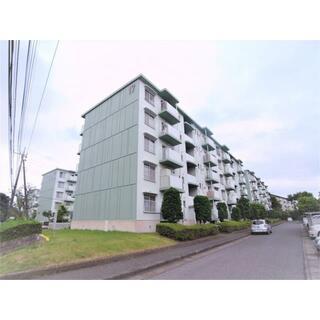 東新井団地 17号棟5階 5階 3LDK