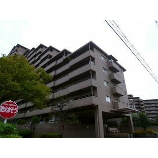 メゾンドール堺 7階 3LDK