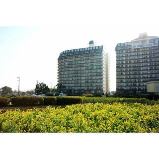 琵琶湖アーバンリゾートⅢ番館 4階 ワンルーム