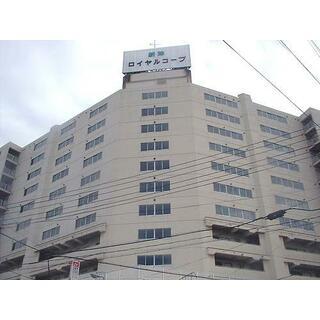 新津ロイヤルコープ 9階 1LDK
