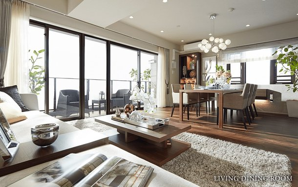 LIVING DINING ROOM