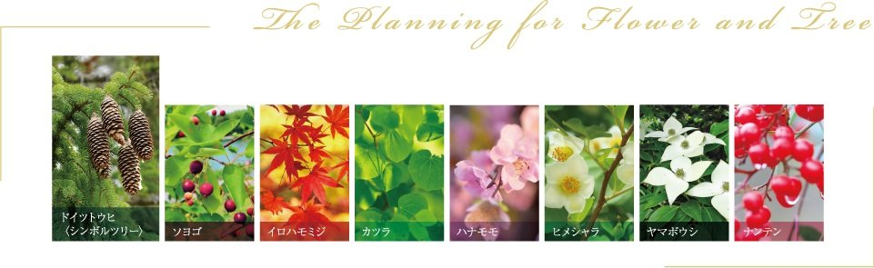 The Planning for Flower and Tree