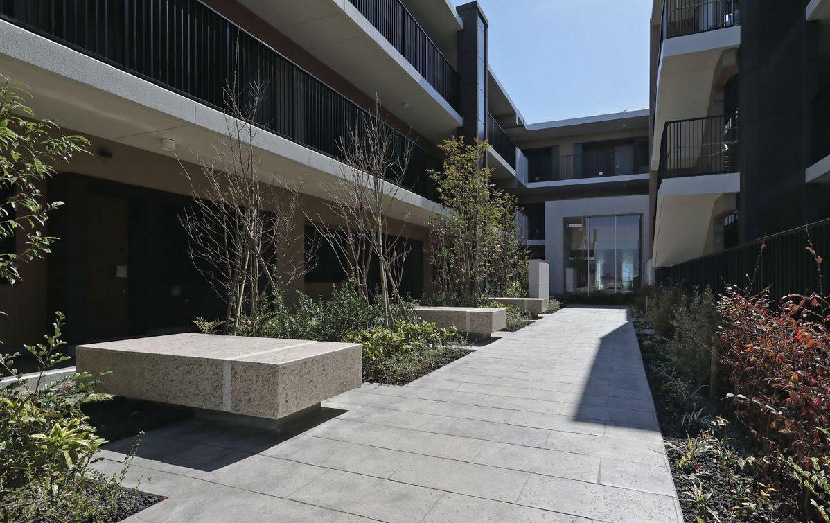 中庭<br /> 緑の木々とベンチを配置した開放的な中庭