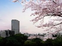MJR赤坂タワー