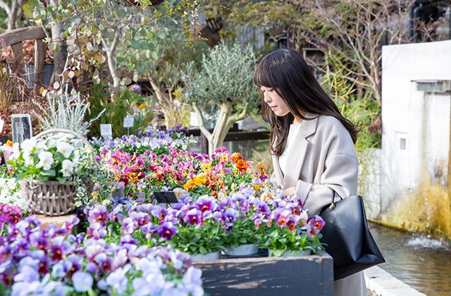 Garden Centre: 【アットホーム】いま、暮らしています。茨木市 ひとり暮らし