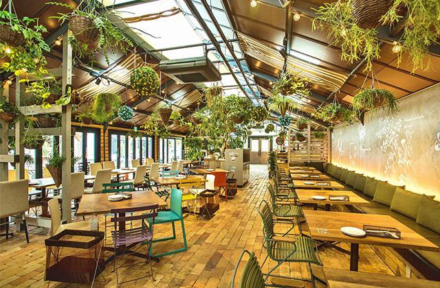 Garden Centre: 【アットホーム】いま住みたいまち、北摂・茨木市で暮らそう